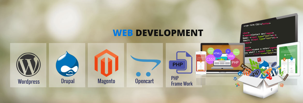 Website Designing Company Pathankot
